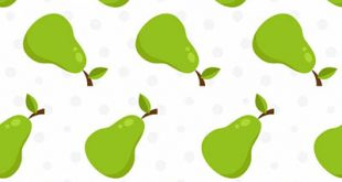4photoshopir-Pear-vector-pack1-وکتور گلابی پک1