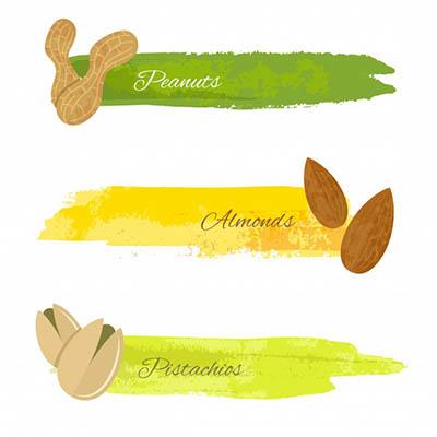 4photoshopir-Pistachios-pack2-وکتور پسته پک2