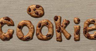 4photoshopir-Style-coockie-استایل شیرینی فتوشاپ