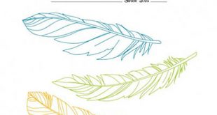 4photoshopir-feather-vector-pack2-وکتور پر پک2