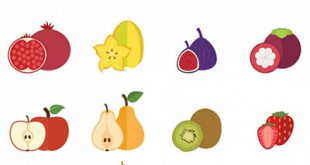 4photoshopir-fruits-vector-pack2-وکتور میوه پک2