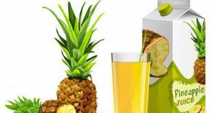 4photoshopir-pineapple-vector-pack2-وکتور آناناس پک2